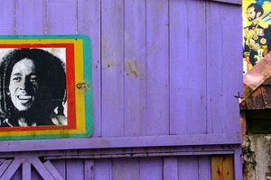 Reggae – De stem van Afrika