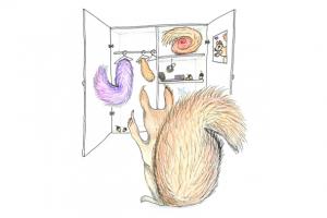 Een eekhoorn met twee staarten